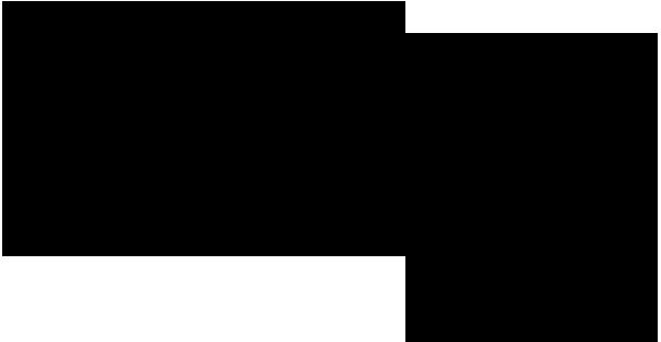 evry-logo_black_rgb_ppt